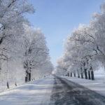 Чем заняться зимой?